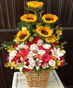 hoa giỏ 01
