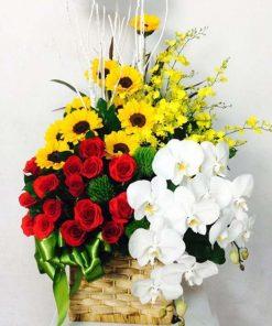 hoa giỏ 07