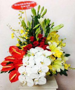 hoa giỏ 09