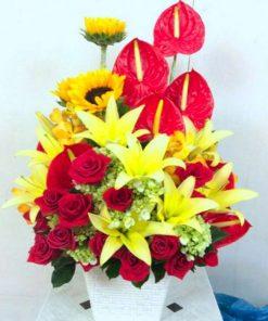 hoa giỏ 10