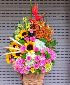 hoa giỏ 11
