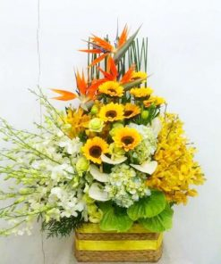 hoa giỏ 14