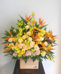 hoa giỏ 22