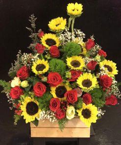 hoa giỏ 23