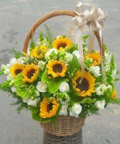 hoa giỏ 28