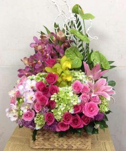hoa giỏ 29
