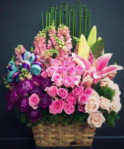 hoa giỏ 33