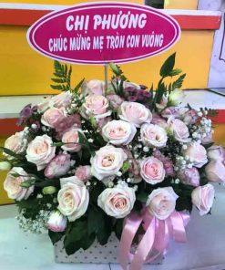 hoa giỏ 41