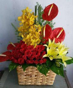 hoa giỏ 47