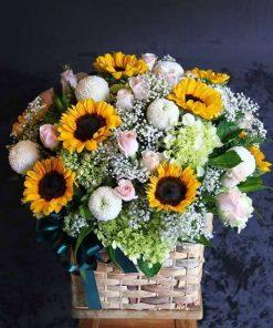 hoa giỏ 48
