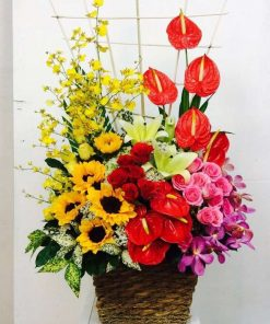 hoa giỏ 51