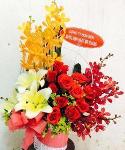 hoa giỏ 54