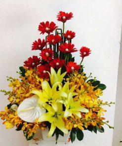 hoa giỏ 55