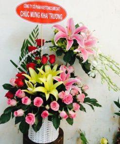 hoa giỏ 61