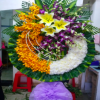 hoa tang lễ 15