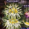 hoa tang lễ 44