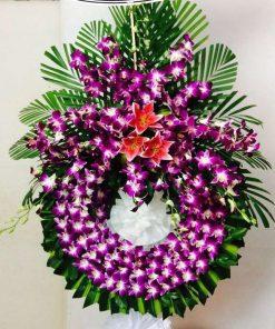 hoa tang lễ 52