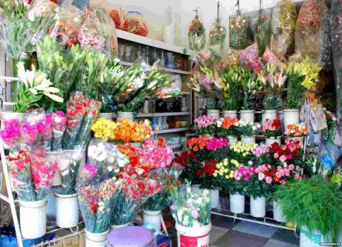 shop hoa tươi misshoa