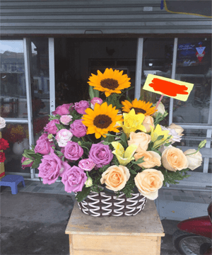 hoa giỏ 65