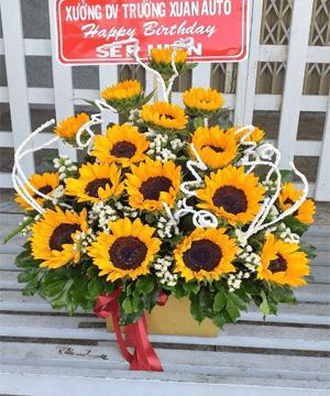 hoa giỏ 66