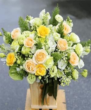 hoa giỏ 68
