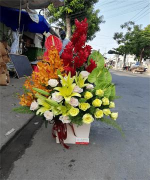hoa giỏ 70