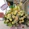 giỏ hoa tươi 73