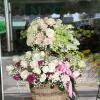 giỏ hoa tươi 76