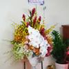 giỏ hoa tươi 77