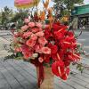 hoa giỏ hg 90