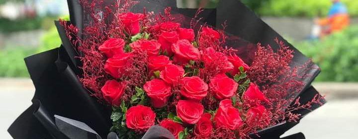 Ảnh hoa hồng